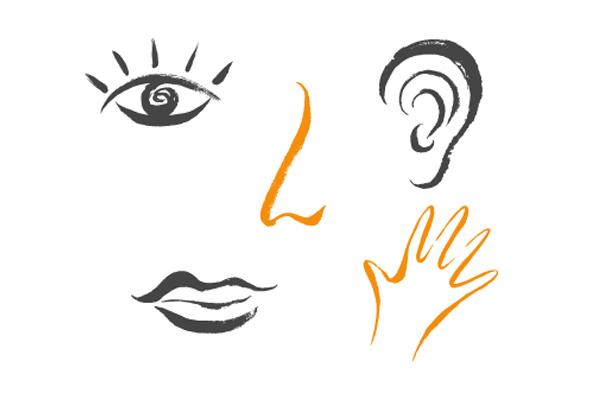 Design sensoriel